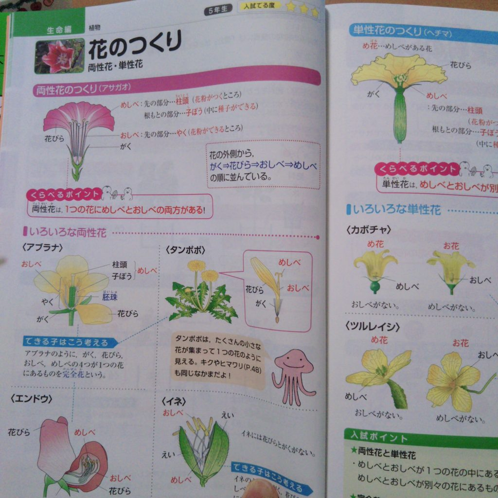 中学受験に使える理科の図鑑